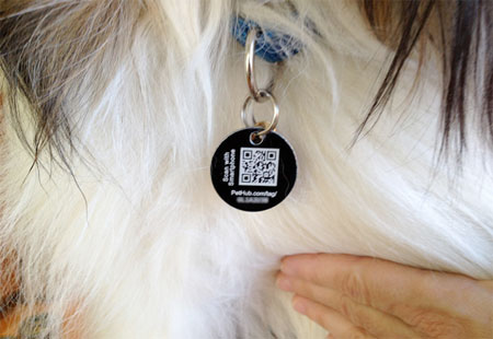 QR Code on pet tag