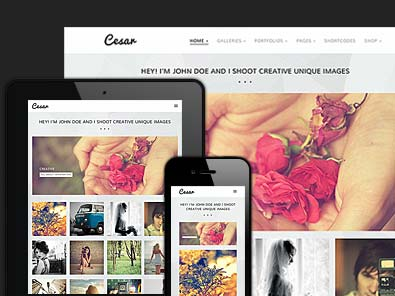 Responsive design template for photographer