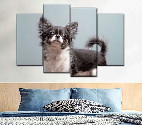 Canvas prints of pets